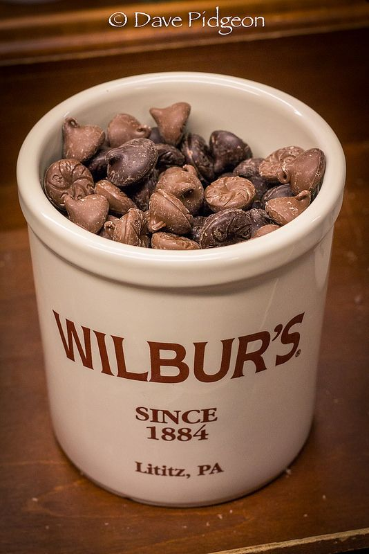 Famous Wilbur's Buds from the chocolate factory in Lititz, Pa. Dark or milk chocolate?