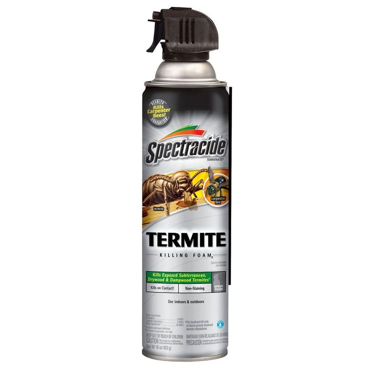 Termite Treatment Home Depot