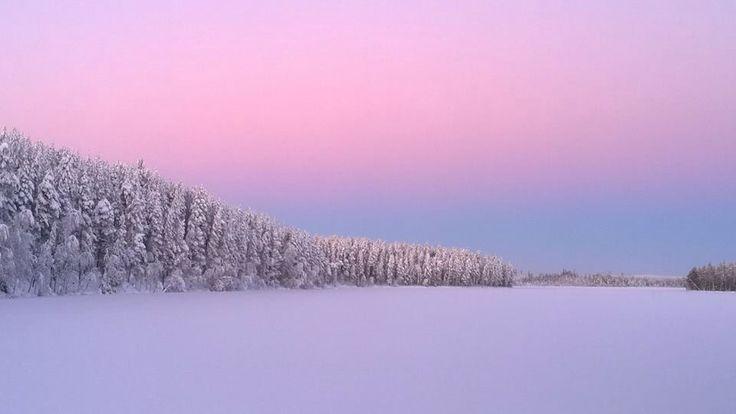Pitkäjärvi in Pelkosenniemi 4.12.2014 photo Anu Tossavainen