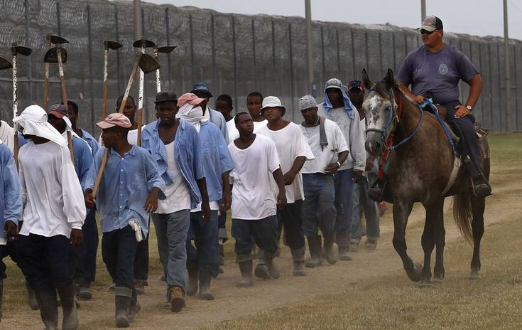 A Modern Day Slave Plantation Exists, and It's Thriving in the Heart of America