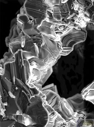 **Nanographite Psychedelic Mushrooms** Fine Art Print (Giclee) by Cris Orfescu, 2009 - Nanosculpture (sculpture at molecular or/and atomic scale) created by drying colloidal graphite in Liquid Nitrogen at 196 degrees Celsius bellow zero and visualized with a scanning electron microscope. The image was captured in a computer and digitally manipulated. Limited Edition Fine Art Print (Giclee), edition size 10, archival inks on luster ultra premium photo paper, 33cm x 48cm (13in x 19in), US$ 695
