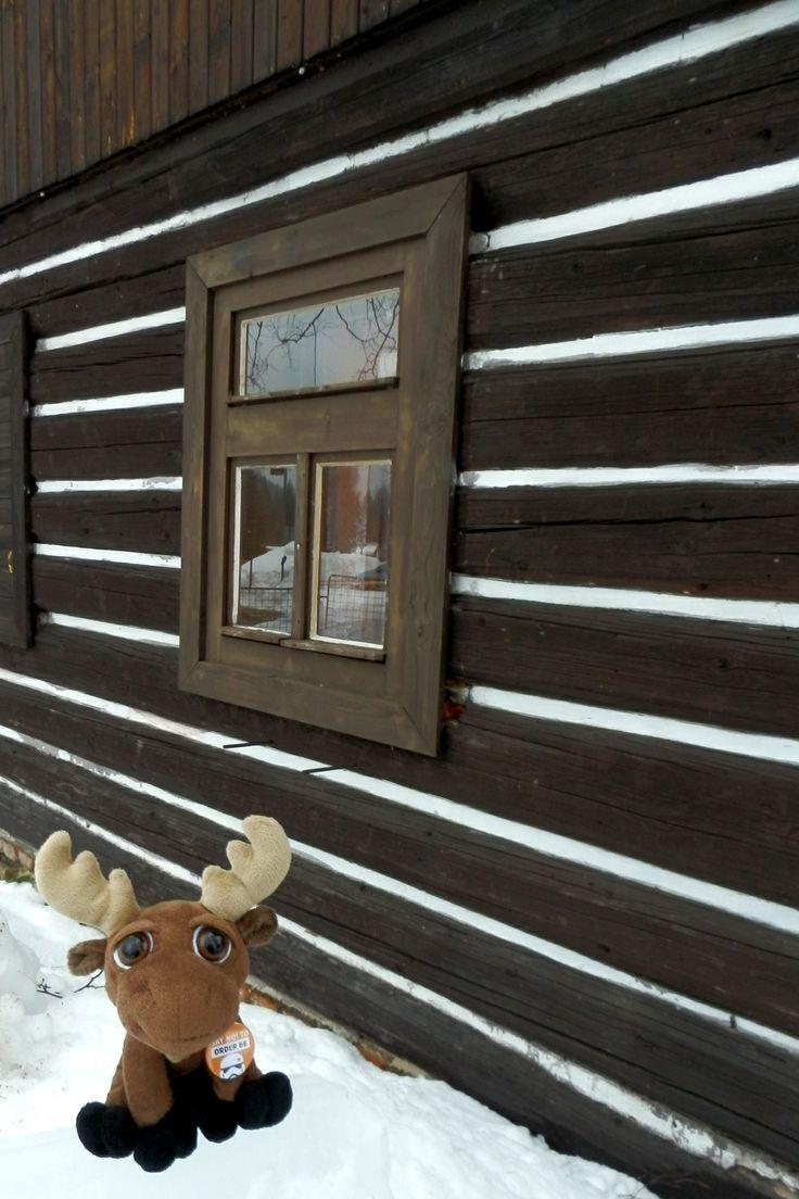 Mr. Moose in Harrachov. If you would like to visit Krkonoše, Mr. Moose recommends a private accomodation at the small family pension - Chaloupka u Zvířecích, Nový Svět 63, Harrachov.