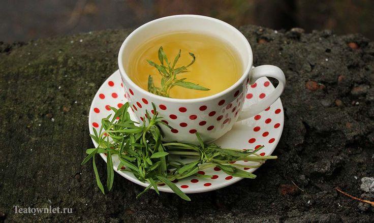 Зелёный чай с чабрецом: польза - http://teatownlet.ru/poleznyiesvoystvachaya/zelyonyiy-chay-s-chabretsom-polza.html