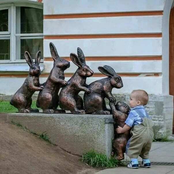Helping the bunnies.