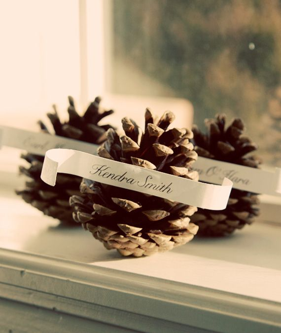 pine cone place cards reposted from tinea dreaden