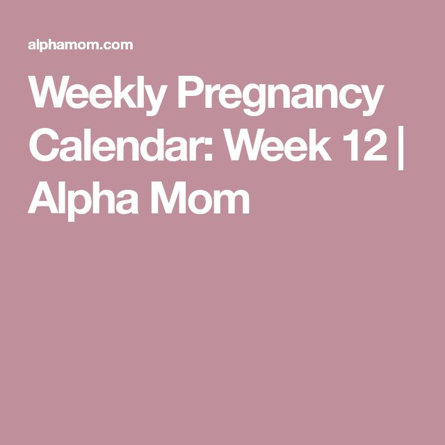 Weekly Pregnancy Calendar: Week 12 | Alpha Mom