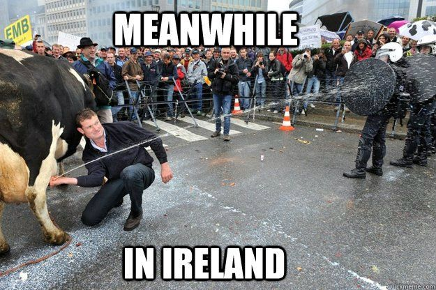 Irish meme of Cow and police lol