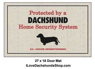 120 Best Images About Long Hair Dapple Dachshund On