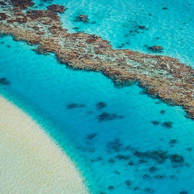 Coral reef, Aitutaki, Cook Islands. Photo by Mauro Risch