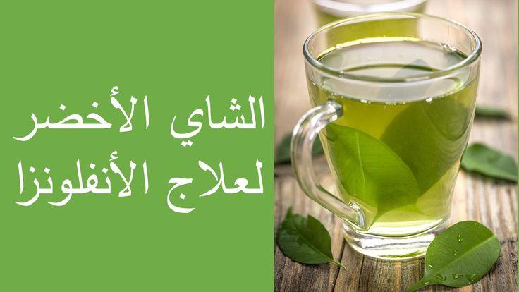 الشاي الأخضر لعلاج الأنفلونزا Glassware Tableware Glass