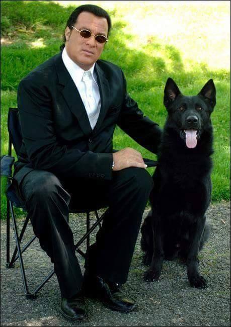 Steven Seagal & his GSD