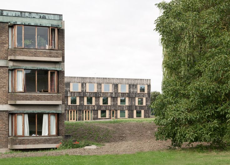 6a Architects adds timber-clad halls to 1960s campus at University of Cambridge