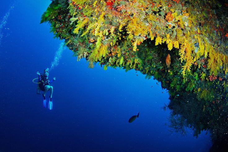 http://travelcentremaldives.com/maldives-blog/anantara-kihavah-villas-best-luxury-diving-resort-worldwide  Anantara Kihavah Villas – Best Luxury Diving Resort Worldwide
