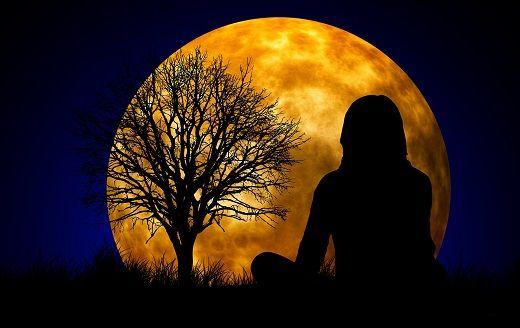 Espectro cruel que se origina nas paisagens do medo, a solidão é , na atualidade, um dos mais g...