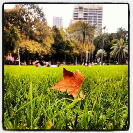 Hyde Park/Sydney #MBFWA