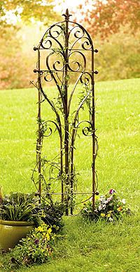 Bella Handiwork | Italian Iron Trellis. Beautiful!