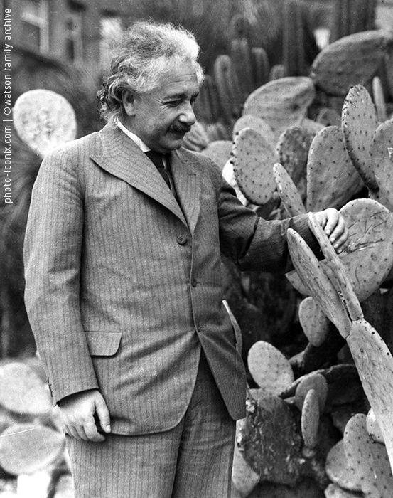 Albert Einstein photograph by George Watson, 1928