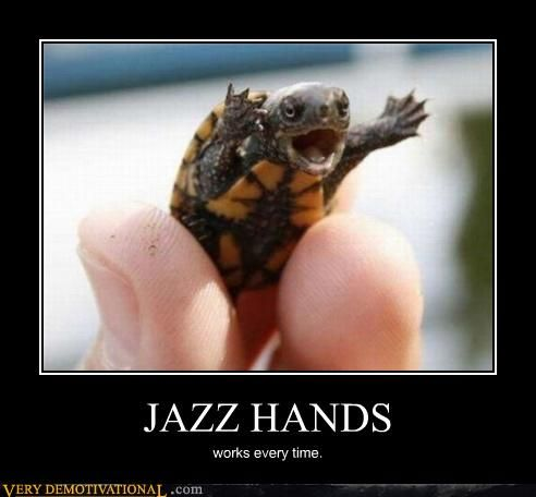 12 Animals Doing Jazz Hands (Photos) | Babble Pets                                                                                                                                                      More