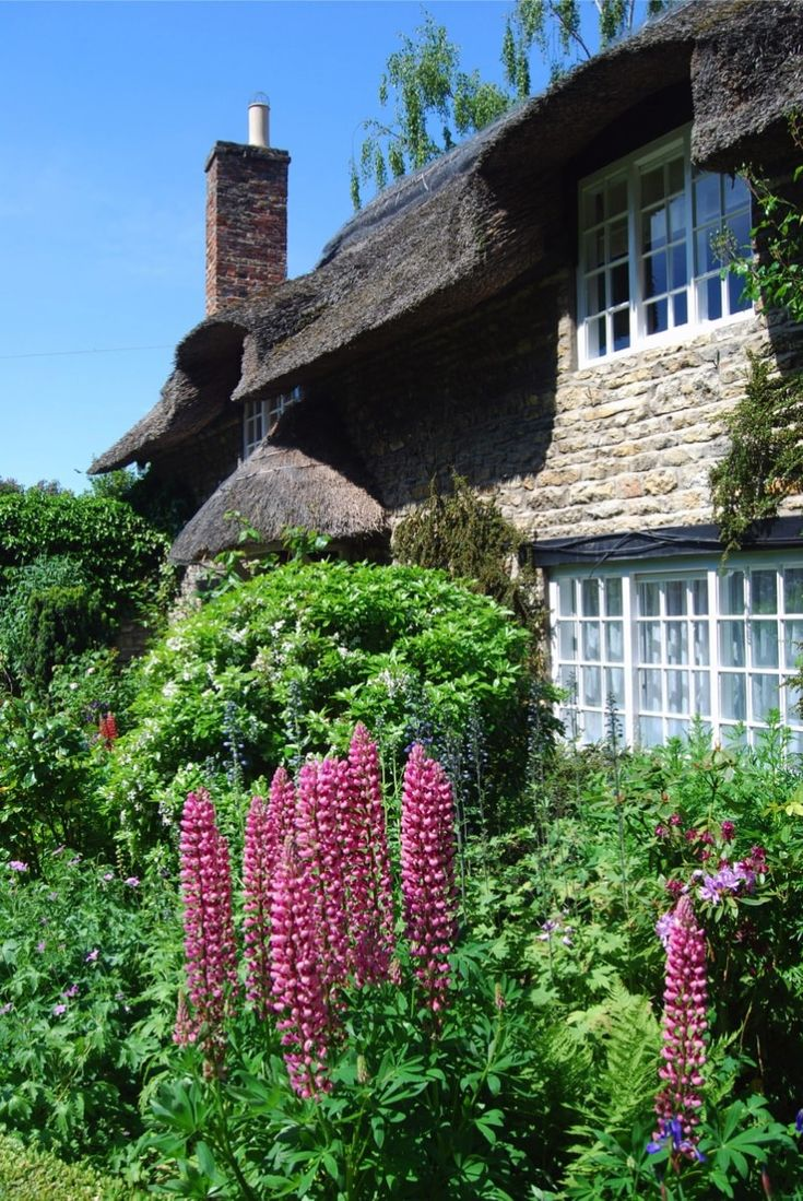 best spring gardening images on pinterest garden spring and