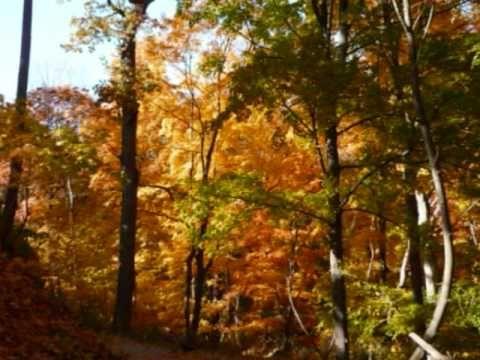▶ Осень. А. Розенбаум. Вальс бостон - YouTube