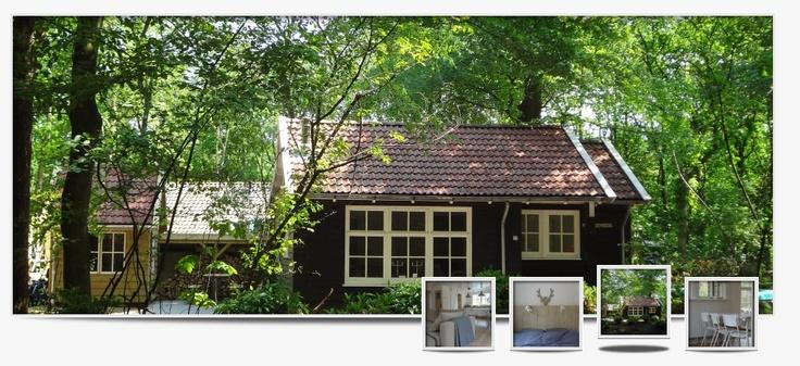 Scandinavisch vakantiehuis in Friesland, max 8 personen