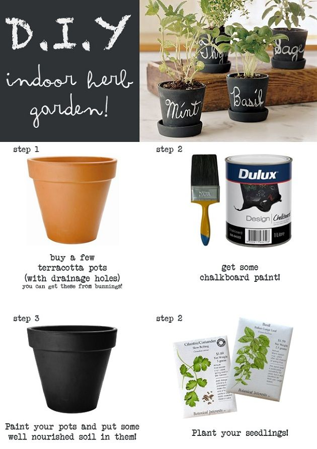 Indoor Herb Garden (YES! use chalkboard paint for the pots)