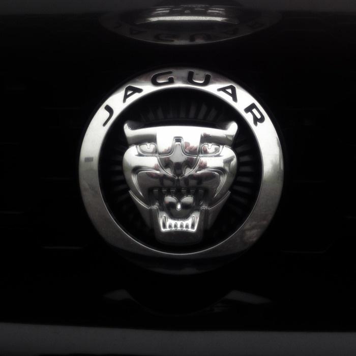 Jaguar: myth and legend