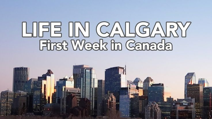 LIFE IN CALGARY: Our first week in Canada. Downtown Calgary, poutine, new car, our Airbnb and a trip to Banff!