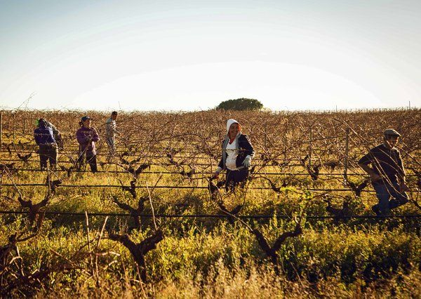 In Portugal, a Land Finely Aged Like Wine - NYTimes.com