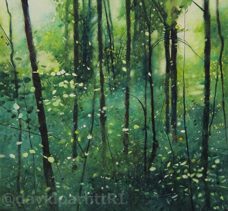 David Parfitt RI_Deep in the wood