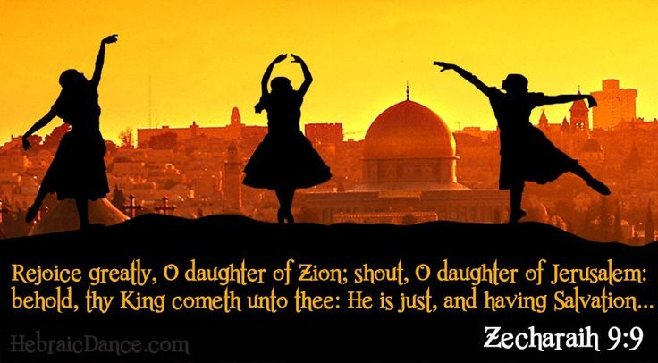 Zechariah 9 Donkey 87 best images about Z...