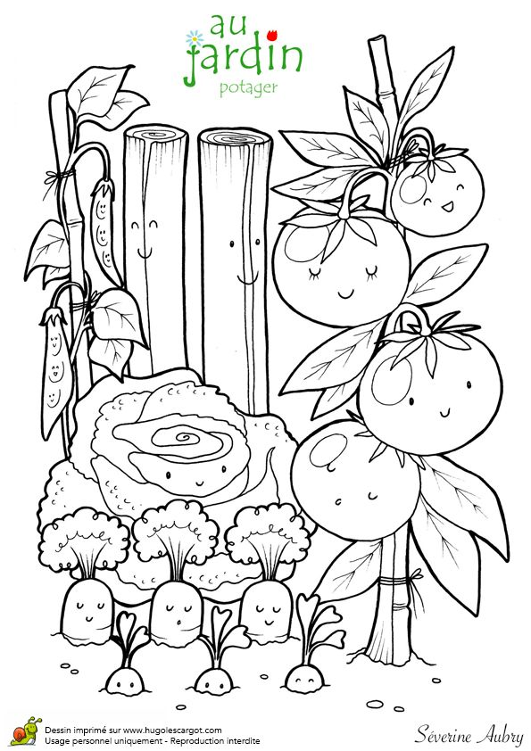Jardinage Au Potager, page 2 sur 13 sur HugoLescargot.com