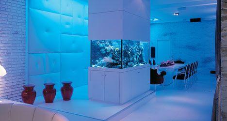 fish tank | Modèle aquarium maison .