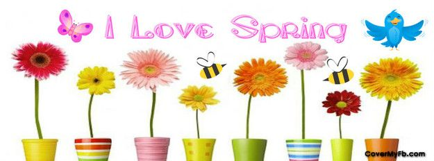 Spring Accommodation Facebook Covers: 1000+ Images About Facebook Covers On Pinterest