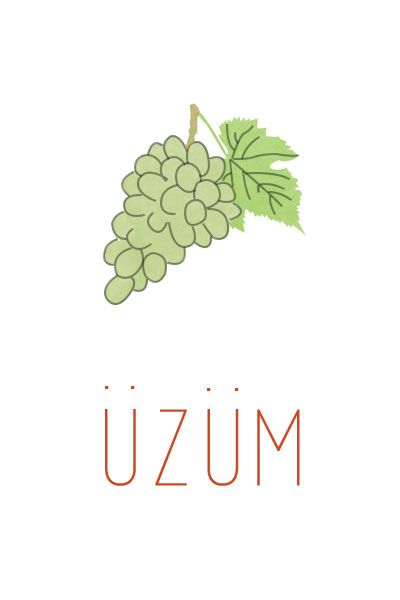 Üzüm İllustrasyonu- Grape Illustration