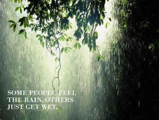 """Some people feel the rain, others just get wet."""