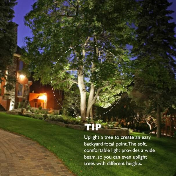 Make your front yard the envy of your neighbors by up lighting your trees to create splashes of light and interesting shadows try philips outdoor led flood