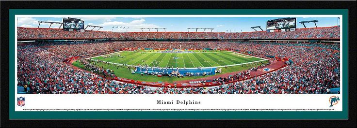 Miami Dolphins Sun Life Stadium 50 Yard Life Panoramic Picture