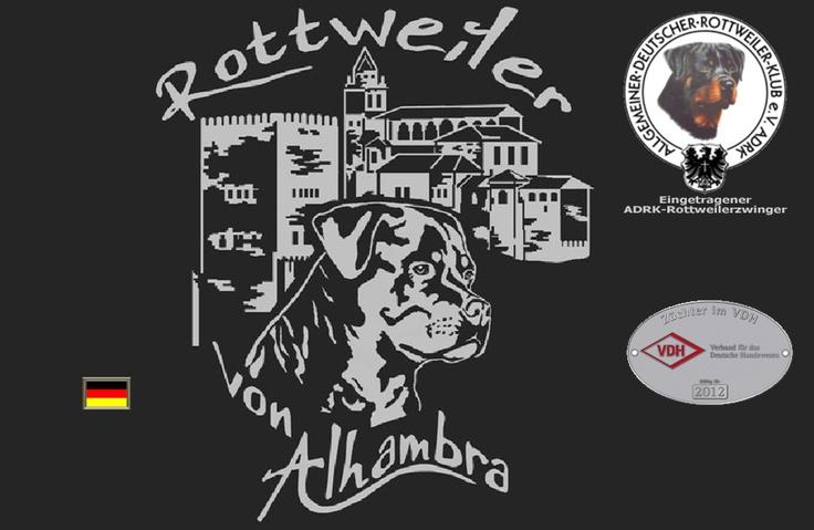 Rottweiler von Alhambra