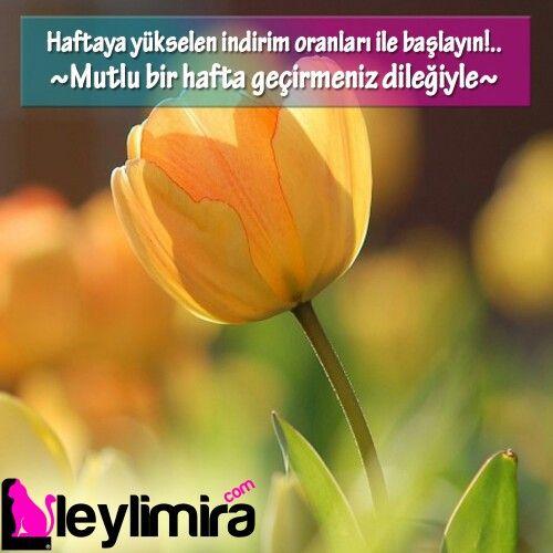 #leylimiracom #aşkmira #parfüm #kozmetik #tomford #nadide #noirdenoir #leylimira #haftabaşı #günaydın #istanbul #ankara #izmir #antalya #istanbul #81il #seninle #bizbiriz #dost #yanindayiz #fenerbahçe #turkey #özel #kadin #kadınolmak #canakkale #sivas #mersin#eyeliner #marka #makyaj