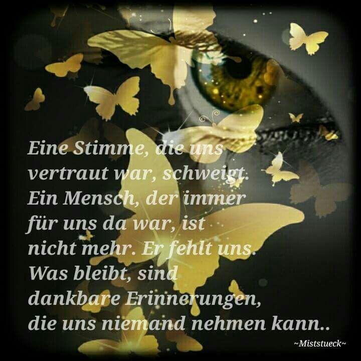 Trauer vermissen Erinnerung