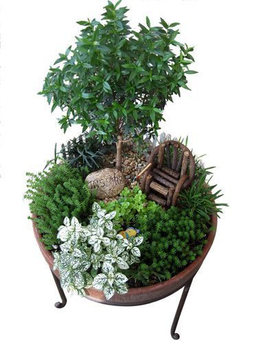 Many beautiful fairy/small gardens on this site! Im hoping to try making one.                                                                                                                                                                                 More