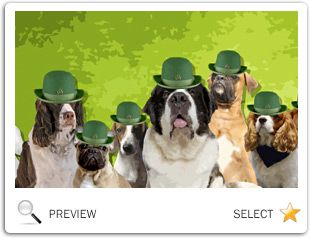 St. Patrick's Day ecard with dogs
