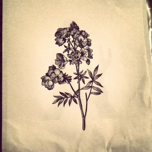 7 Best Prairie Grass Tattoo Images On Pinterest