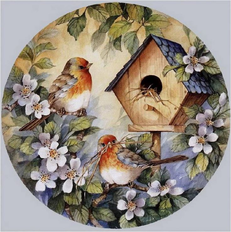 .Beautiful bird and birdhouse