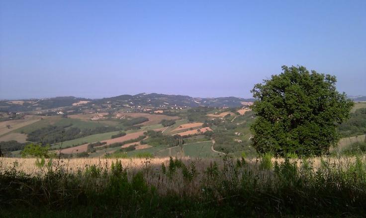 Tavoleto - My hills, my roots  #Travel