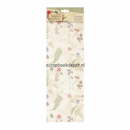 Tissue Paper - Nature's Gallery, Scrapbookdepot