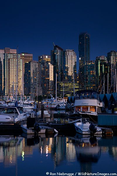 Coal Harbour Marina and downtown Vancouver, Vancouver, British Columbia, Canada
