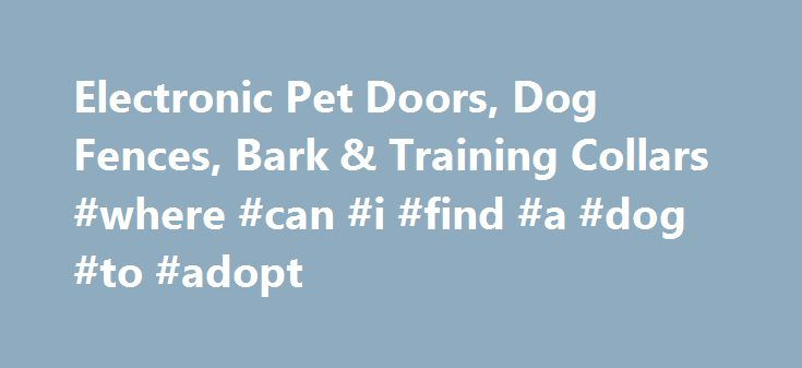 Electronic Pet Doors, Dog Fences, Bark & Training Collars #where #can #i #find #a #dog #to #adopt http://pet.remmont.com/electronic-pet-doors-dog-fences-bark-training-collars-where-can-i-find-a-dog-to-adopt/  POWER PET пїЅ DOORS The Most Amazing Pet Doors on the Planet! ELECTRONIC DOG DOORS Are Not All Created Equal Side by Side Comparison of ELECTRIC DOG DOORS Advantages of a FULLY AUTOMATICMOTORIZED DOG DOOR The Quick, Easy Way to INSTALL A DOGGIE DOOR Everything You'll Ever Need to Know…