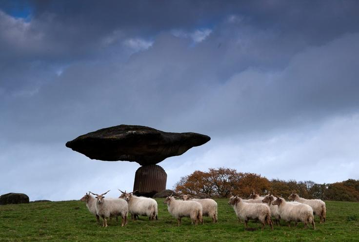 Zwevende steen - Floating rock #Dalfsen #Overijssel